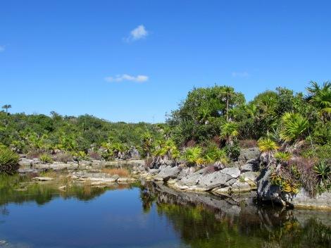 Laguna Lagartos, Akumal, Quintana Roo